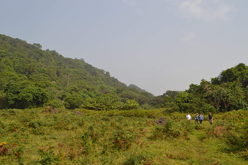 The group hiked near an ancient volcano to reach the Moka Wildlife Center. Photo credit: Scott Cooper