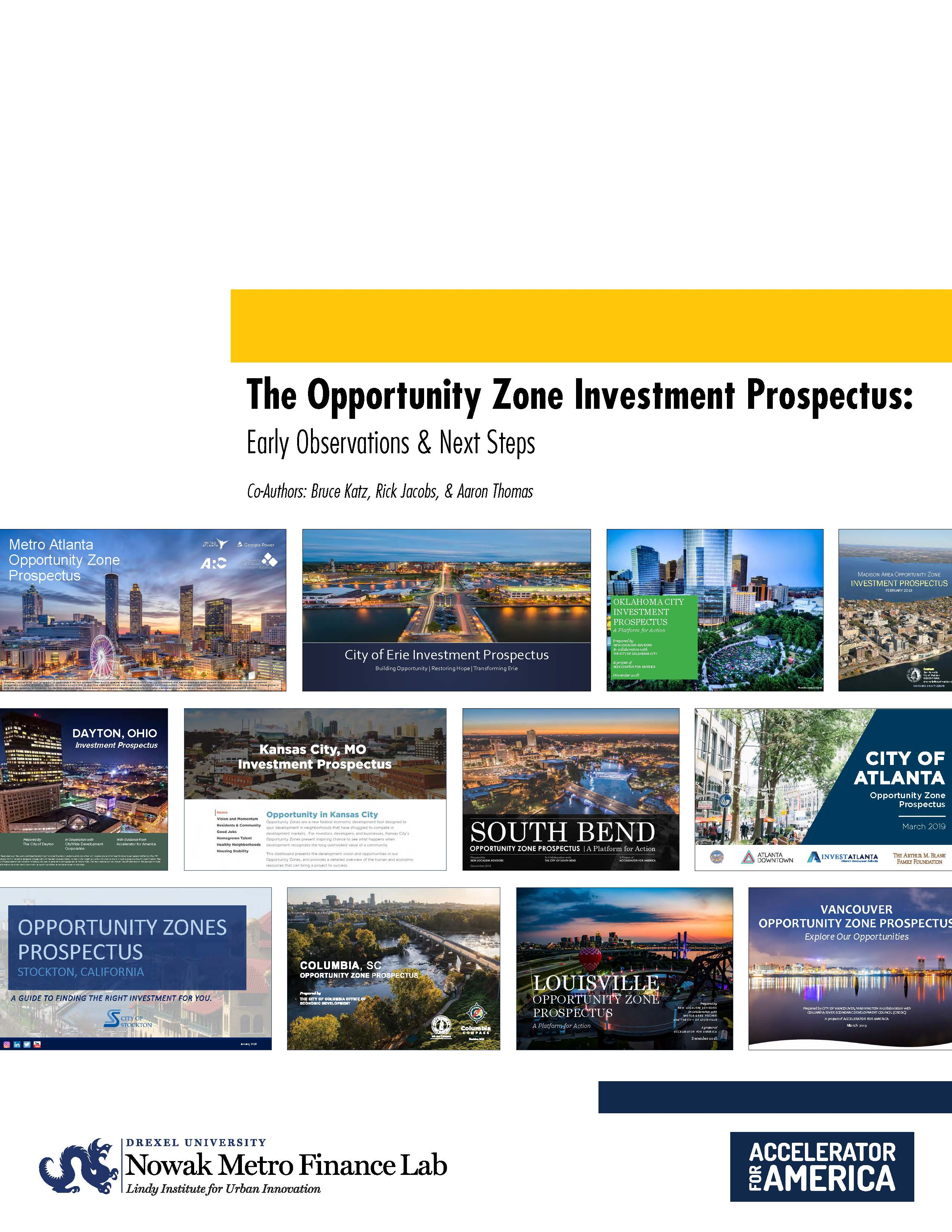 Cover of Investment Prospectus Early Observations and Next Steps report