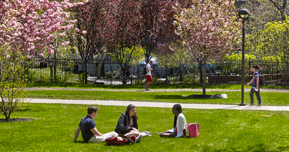 Students sitting on the grass on campus